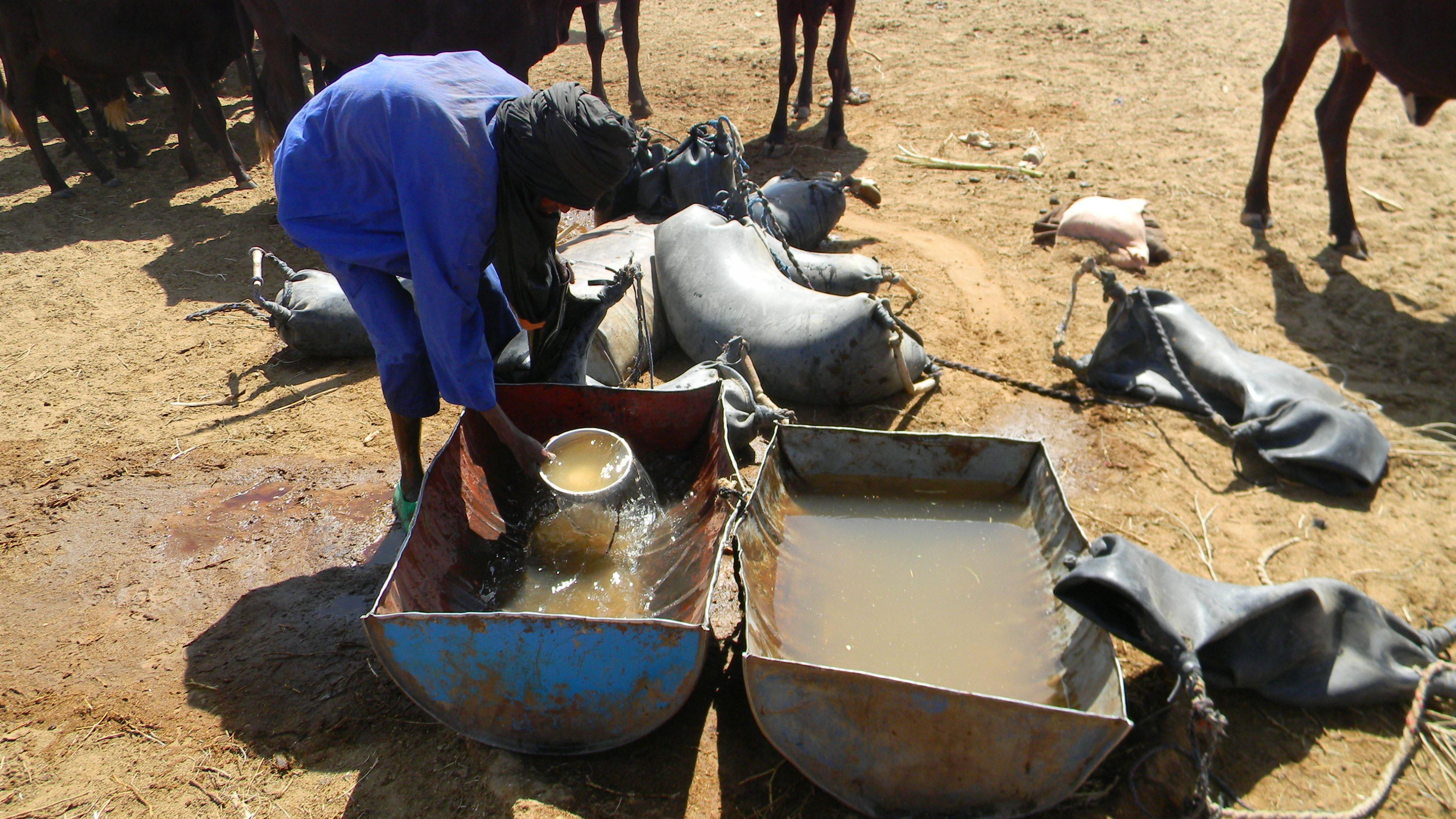 l'eau tirée du puits